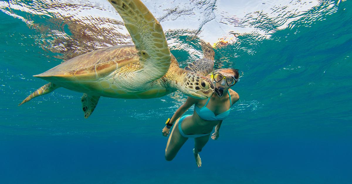 Akdeniz Sahillerinde Teknede Rahatlatıcı Bir gün Geçirin