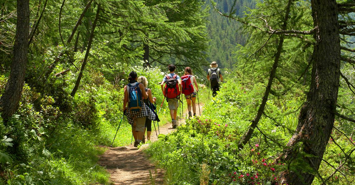 Bodrum Yarımadası Doğa Yürüyüşlerine Katılın
