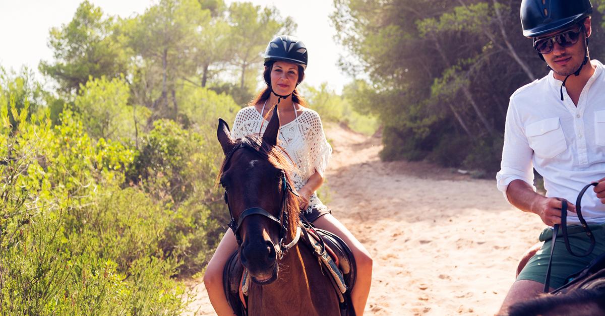 Çam Ormanları İçinde At Sürün