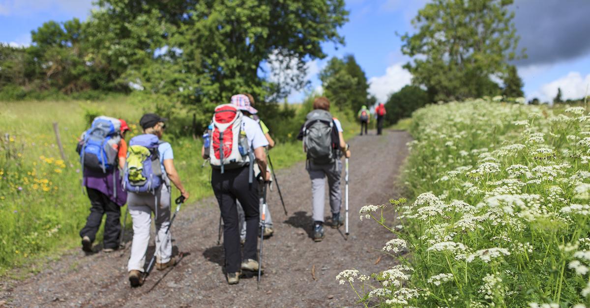 Ganos Dağları'nın Yamaçlarında Doğa Yürüyüşlerine Katılın