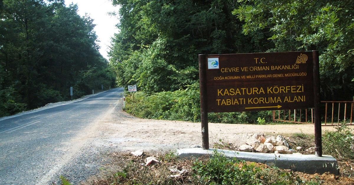 Kasatura Tabiat Koruma Alanı'nda Doğa Yürüyüşü Yapın