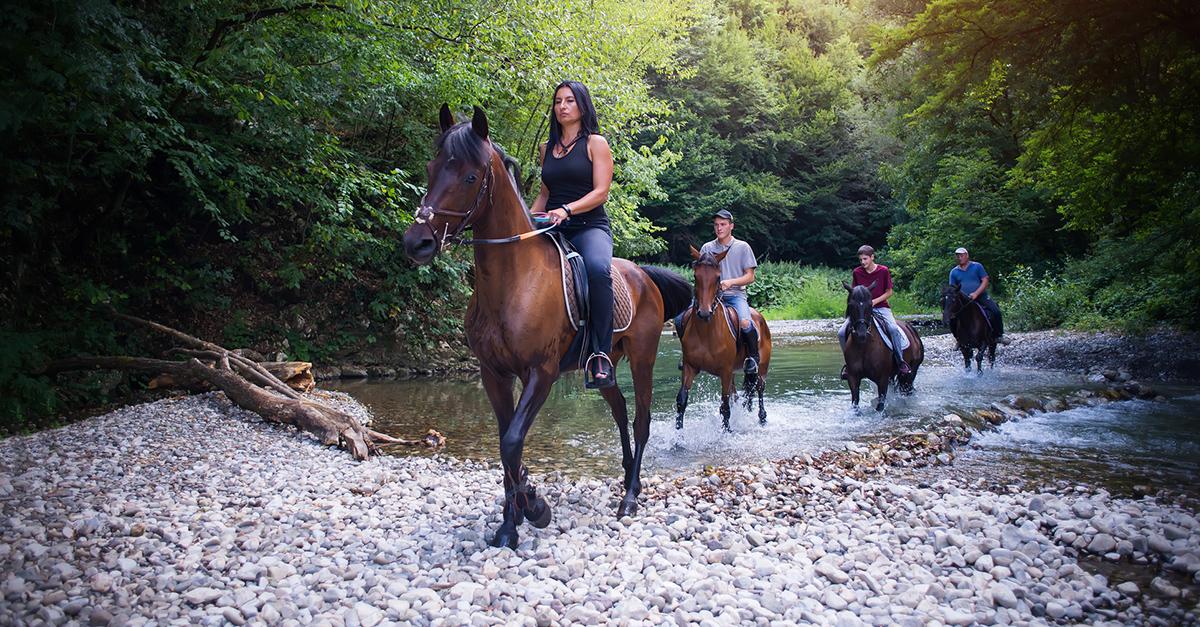 Ormanlarda ve nehir kenarlarında at sürün