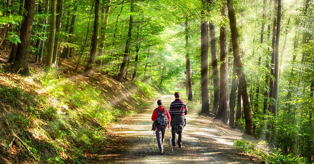 Polonezköy Doğa Harikası Tabiat Parkı'nı Görün