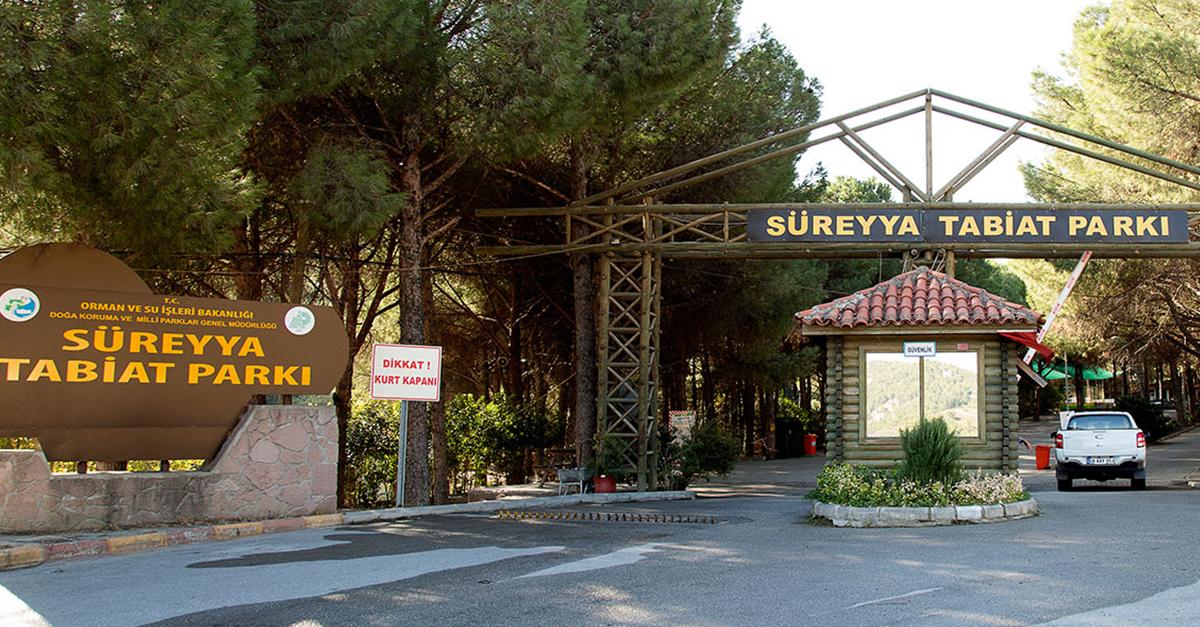 Süreyya Tabiat Parkı'nda Doğa Yürüyüşü Yapın