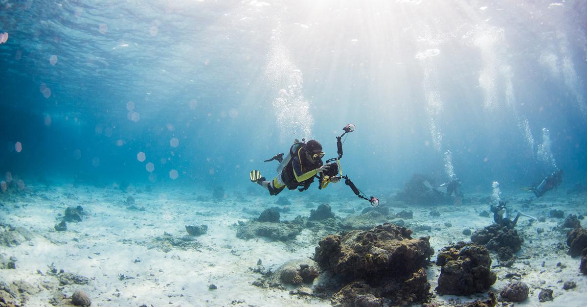 Tüplü Dalışlar Yaparak Akdeniz'in Güzelliğini Keşfedin